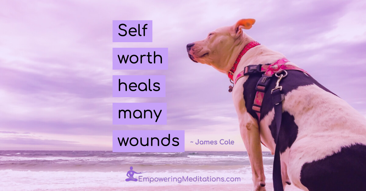 Meme - Self worth heals many wounds - Page