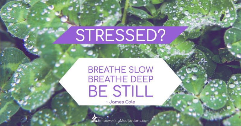 Meme - Stressed breathe slow - Page