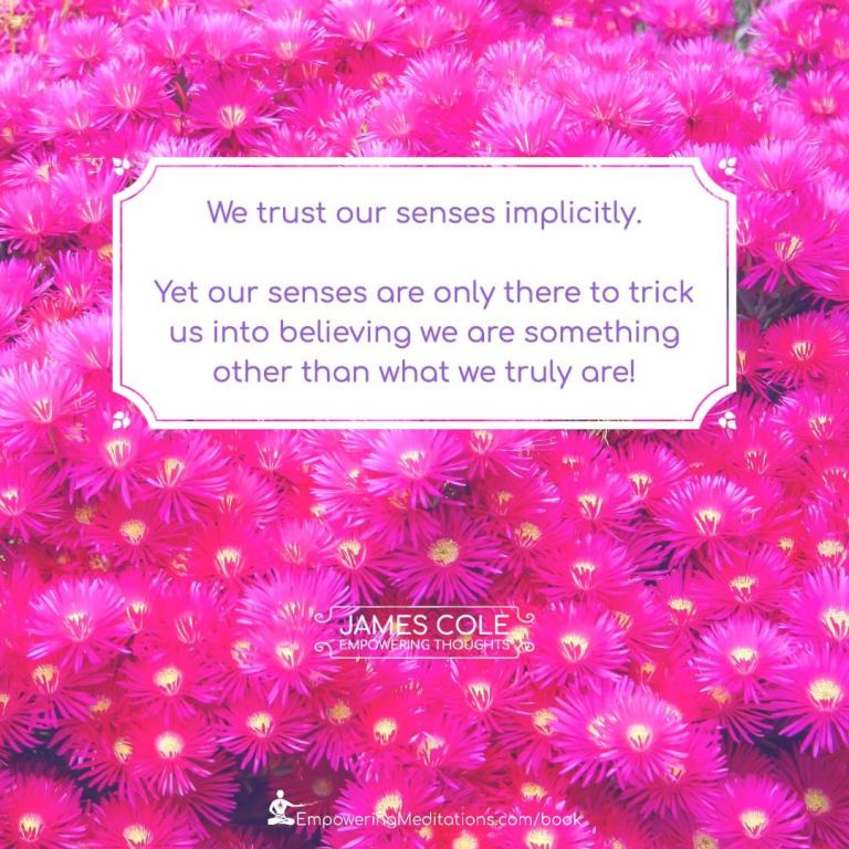 We trust our senses implicitly. Yet our senses are only there to trick us into believing we are something other than what we truly are!
