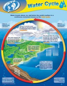 Water cycle chart also know it all rh empoweryourknowledgeandhappytrivia wordpress
