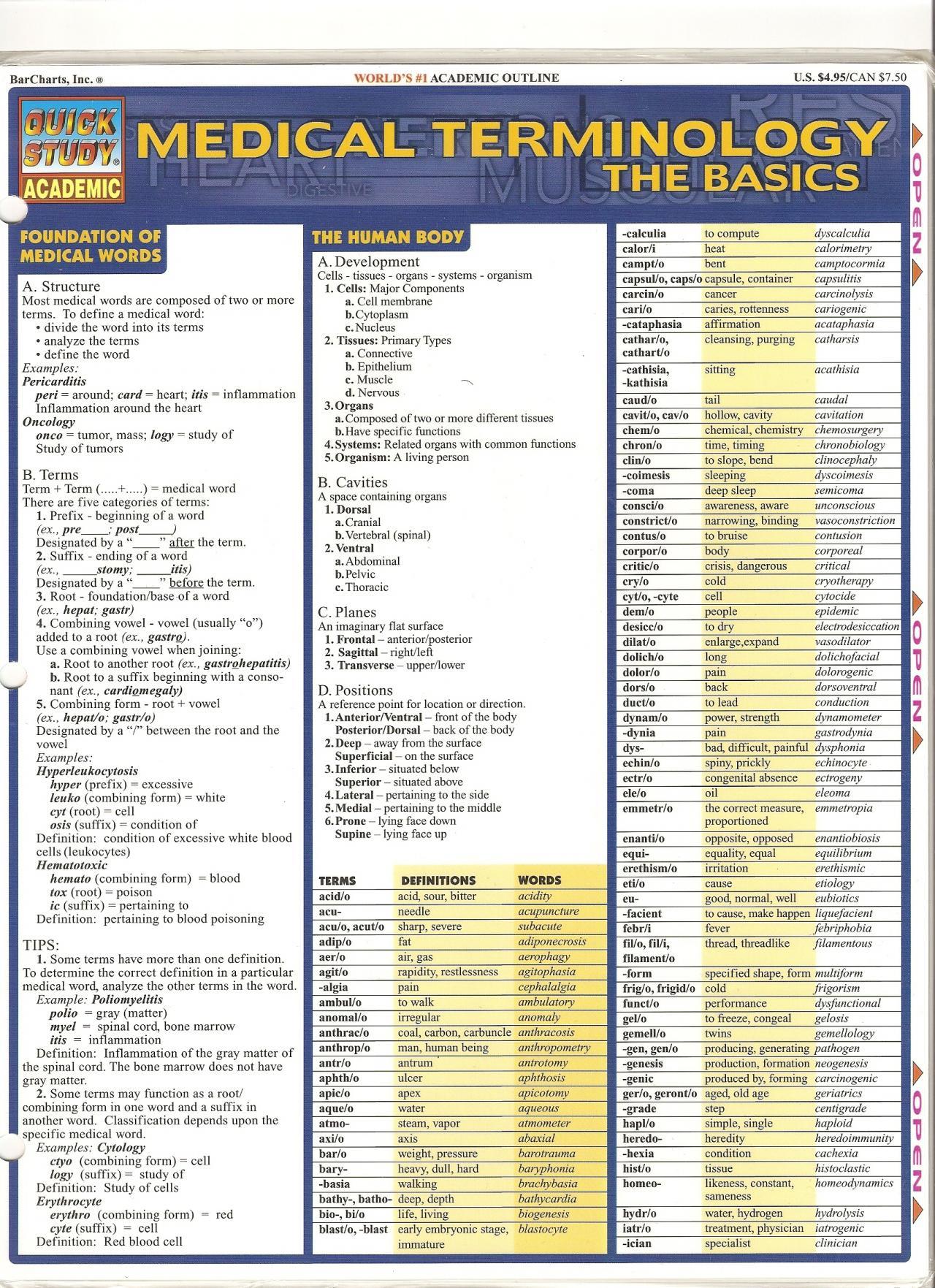 Basic Medical Terminology