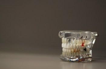 Quanto custa estudar odontologia?