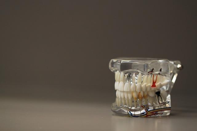 estudar odontologia