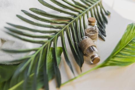 huile essentielle pres feuilles palmier 23 2147809228 min