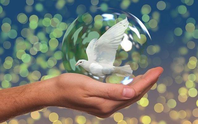 Ejercicio para Superar nuestros Conflictos Interiores como emprendedores