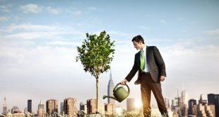 potenciales emprendedores
