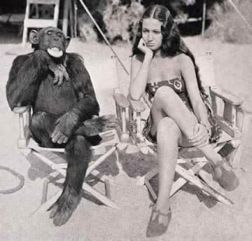 monkey-see-monkey-do_bw_pictue