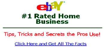Adversarial examples Ebay