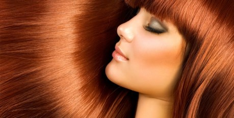 empresa peluqueria de Terrassa