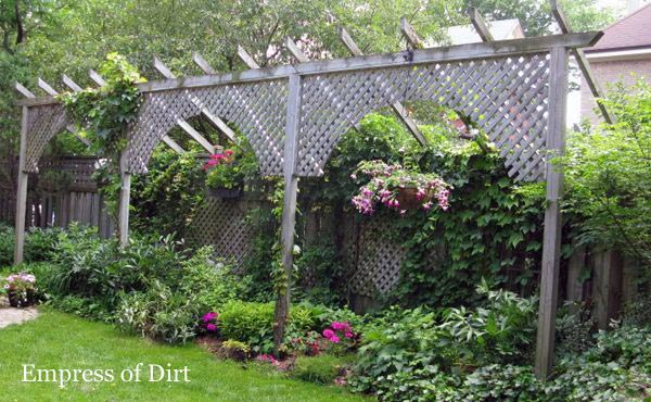 Privacy Fence & Screen Ideas For The Garden Empress Of Dirt