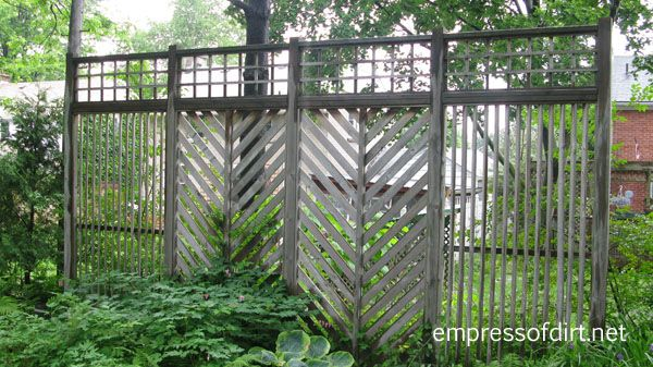 Garden Fence & Screen Privacy Ideas Empress Of Dirt