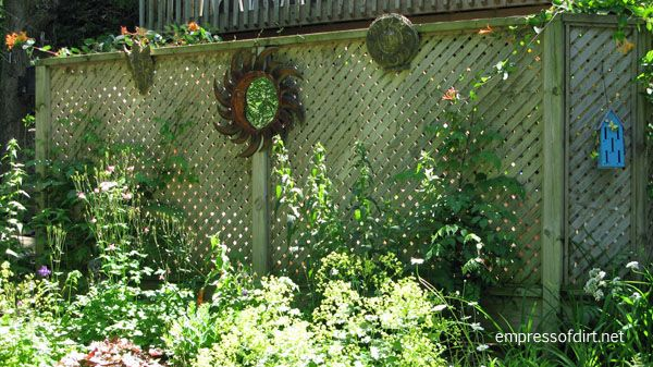 Garden Fence & Screen Privacy Ideas Empress Of Dirt