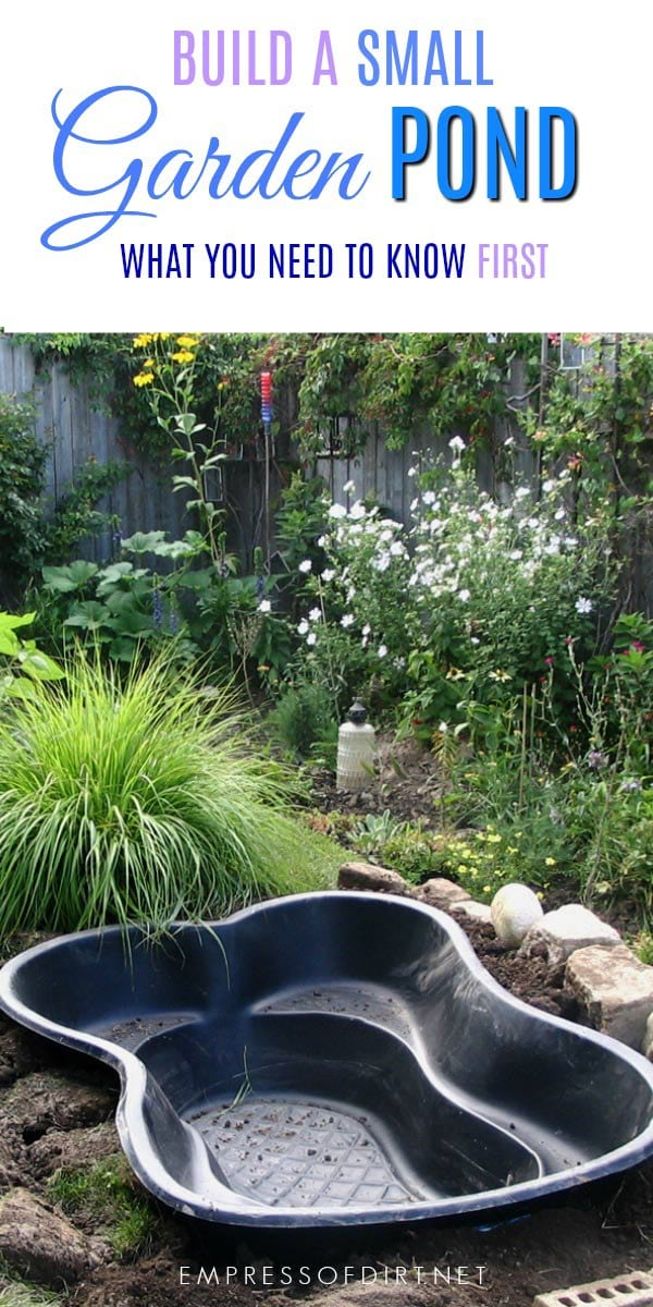 Garden Pond Plant Soil