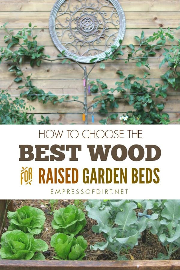 Best Raised Garden