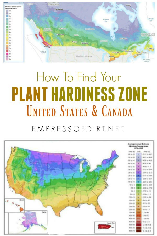 How To Find And Understand Your Plant Hardiness Zone Empress Of Dirt