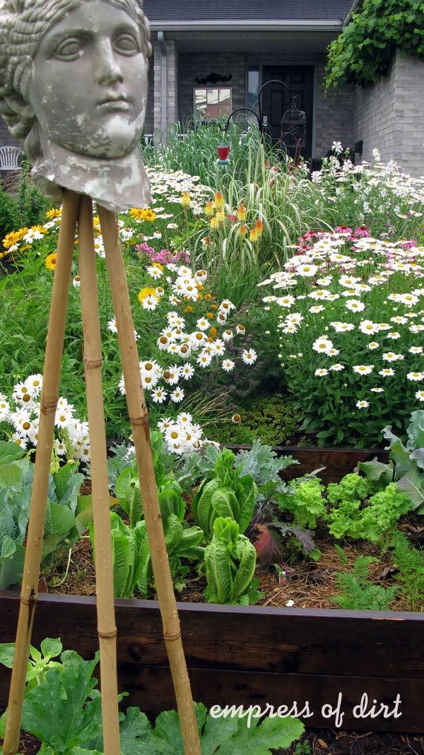 How To Grow A Dream Garden On 100 Per Year Empress Of Dirt