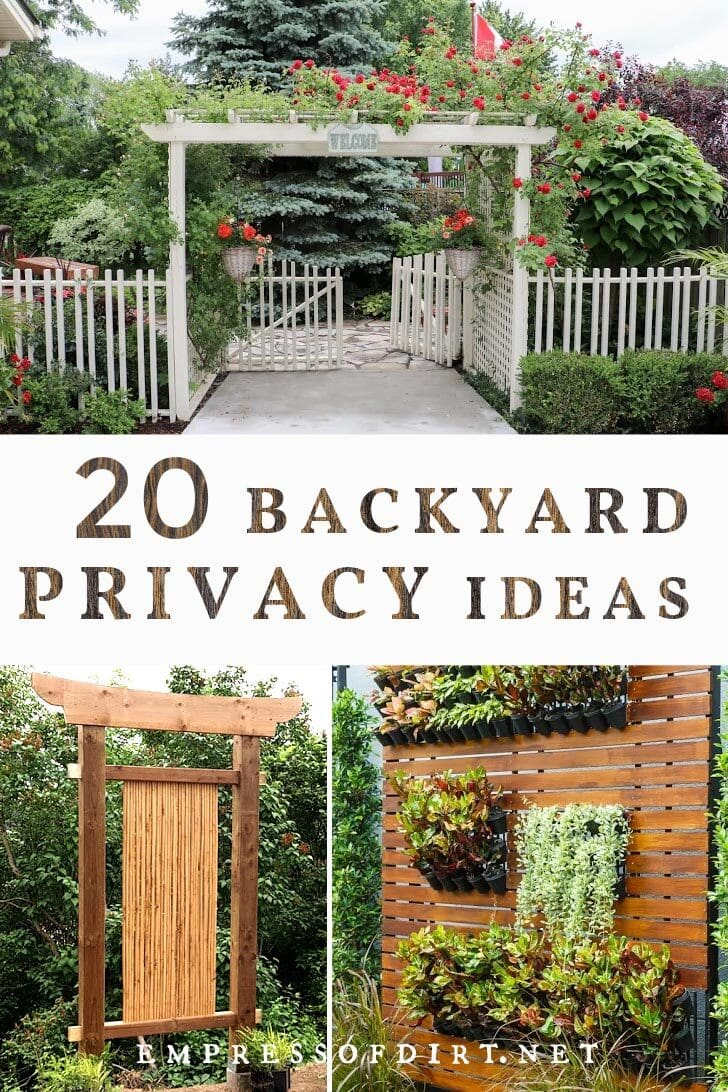 20 ideas for better backyard privacy
