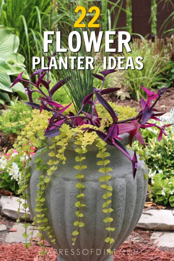 creative flower container ideas