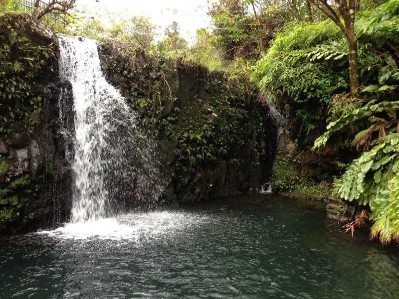 Maui - A tropical Escape Video 1 Experience Maui Maui is a lush tropical islandbrimming with romance and adventure. It is the second largest island in the state of Hawaii. It is also call