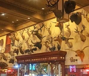 san antonio, Buckhorn Saloon, Texas Rangers Museum