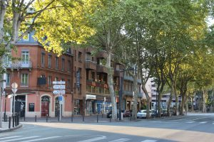 tree lined street of Toulouse