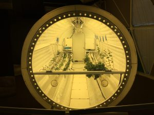 lunar green house testing how plants grow in space