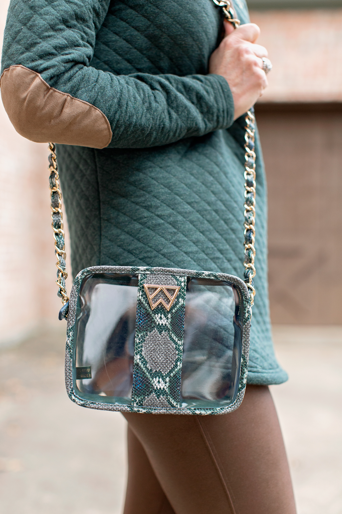 clear handbag with green python trim
