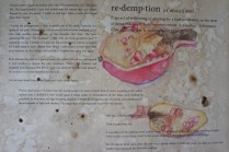 Pomegranate Decayed