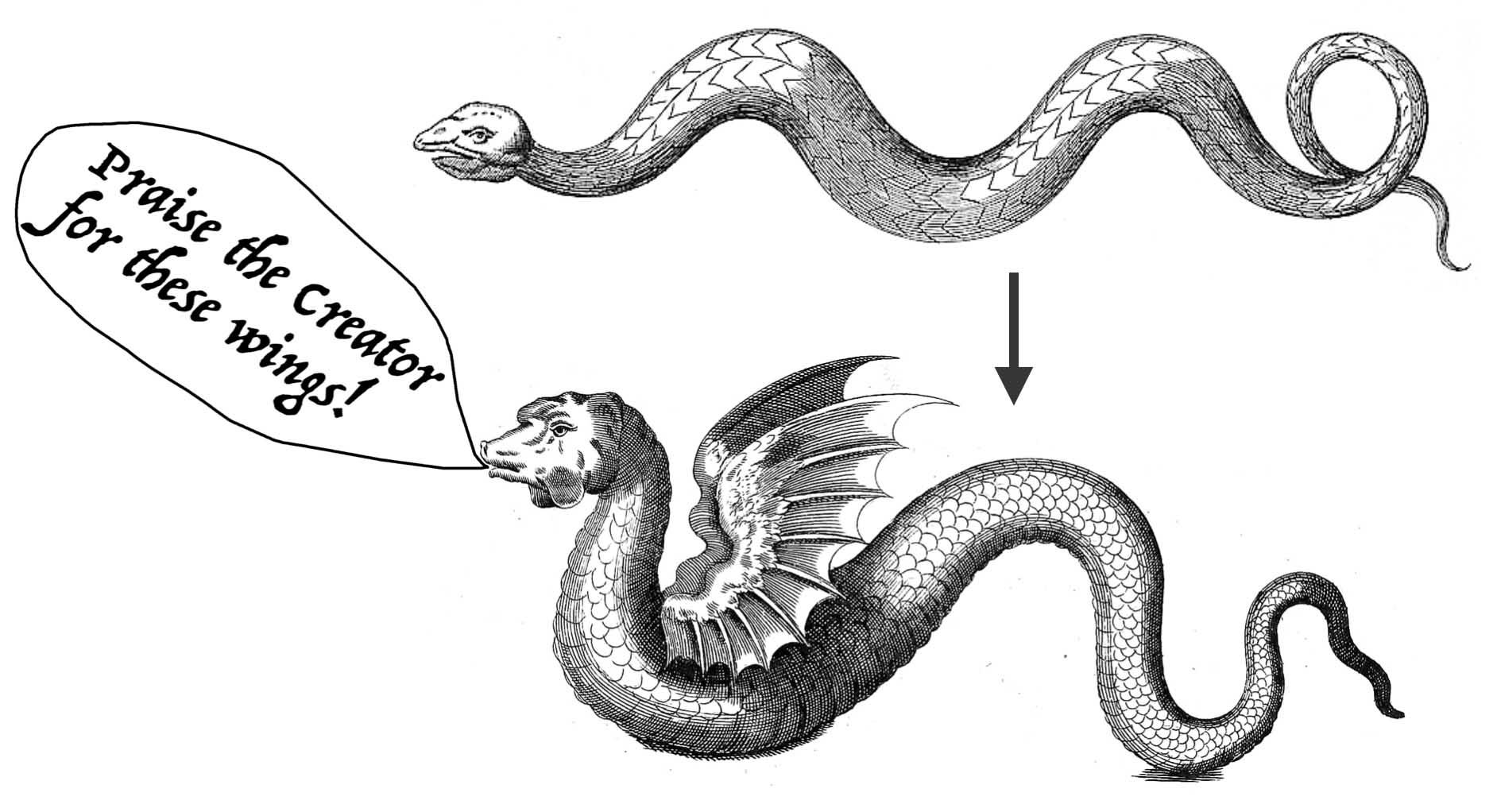 API Evolution the Right Way