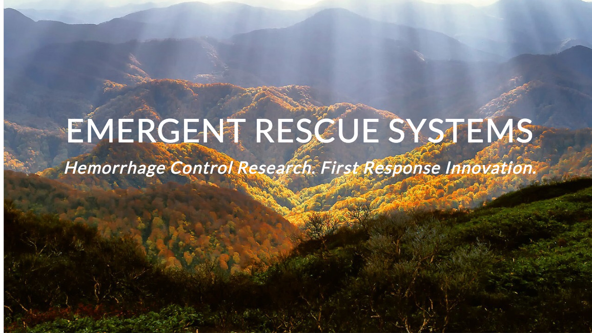 Emergent Rescue Systems