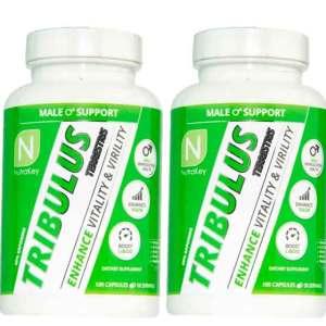 Tribulus Terrestris Puro (60% de saponinas)