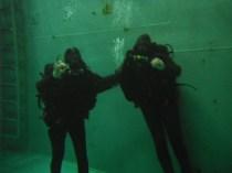 Ship's Team Diver