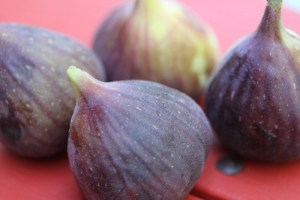 How to Eat a Fresh Fig