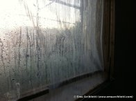 condensation on window coverings