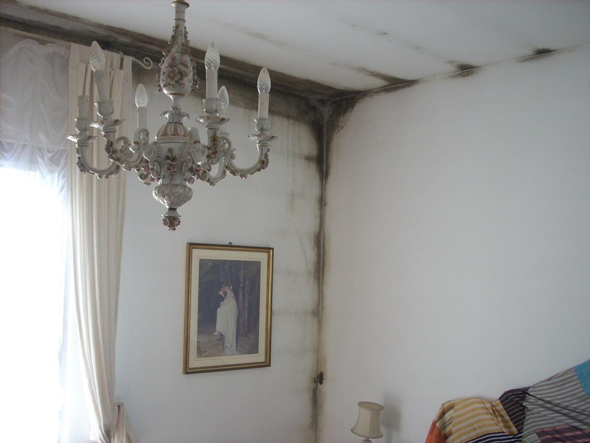 Problemi di muffa e condensa in casa  Emu Architetti