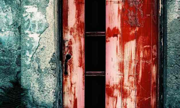 Fade to red – Shot on Fuji Velvia 50 RVP50 at EI 50 (120 format)