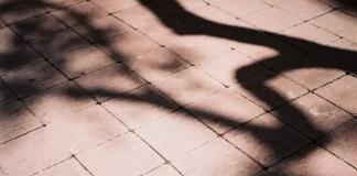 Sepia shade - Kodak ULTRAMAX 400 shot at ISO400