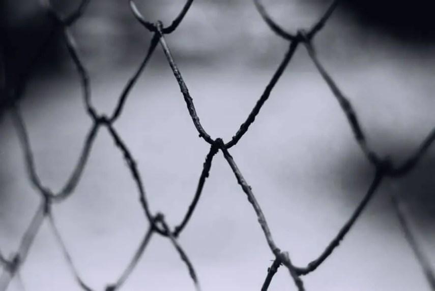 Rust-link fence - Efke KB25 - shot at ISO25