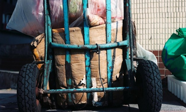 Dirty load – Shot on Fuji Pro 160NPC at EI 160 (120 format)