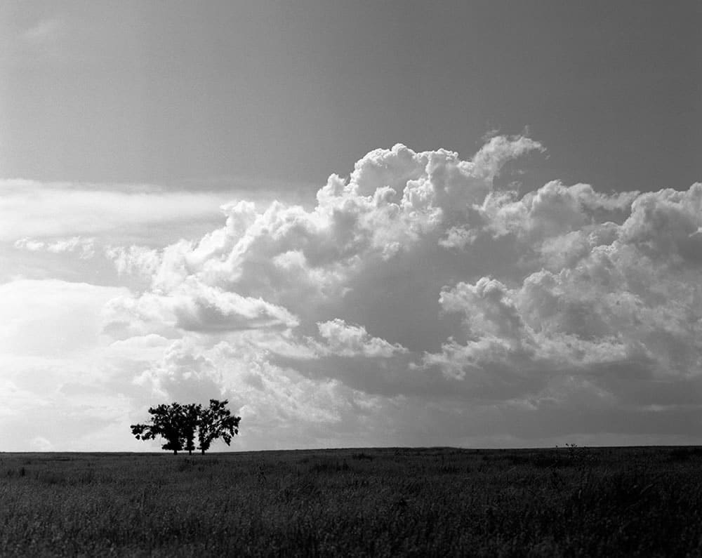 rees - Lincoln County, Colorado. Pentax 6x7, 45mm f/4, Ilford Pan F Plus