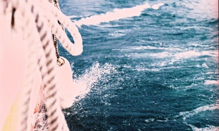On the ropes – Shot on Fuji Pro 400H (120)