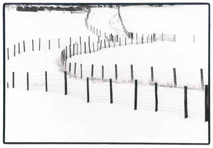 Fence in snow
