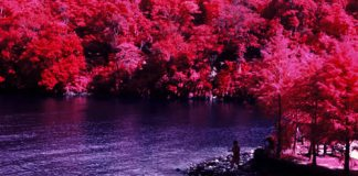 Lush - Kodak Aerochrome III (1443) shot at ISO400. Color infrared slide film in 120 format shot as 6×6. Orange #21 filter