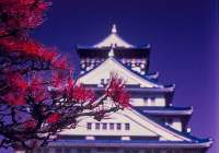 Osaka infrared - Kodak Aerochrome III (1443) shot at ISO400. Color infrared slide film in 35mm format. Orange #21 filter.