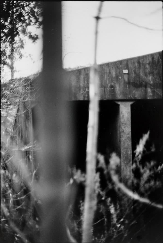 Untitled, from Canonicus' Bow, 35mm Pan-F in Pyrocat HD, 2014