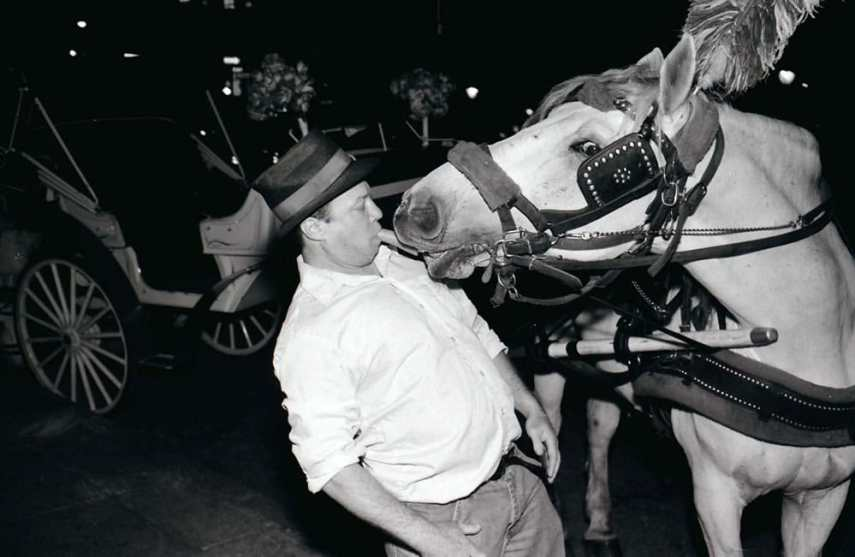 Carriage driver and horse share a carrot, Ilford FP4 at 100, Rodinal 1:50 with flash