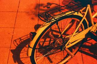 Red or Dead - Kodak Vision3 250D 5207 shot at EI 25. Color motion picture film in 35mm format. Shot as redscale.