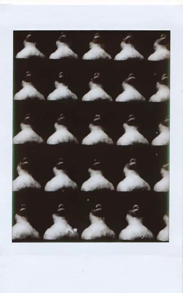 Repetition: ducks