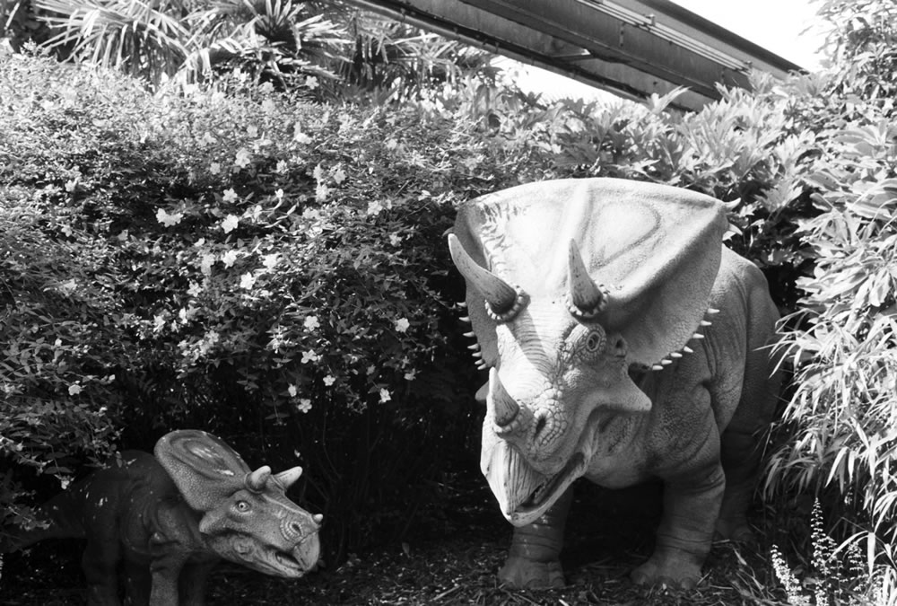 Do-you-think-he-saurus? - Ilford Delta 400 Professional - Michelle Parr, Harman Technology Sales and Marketing