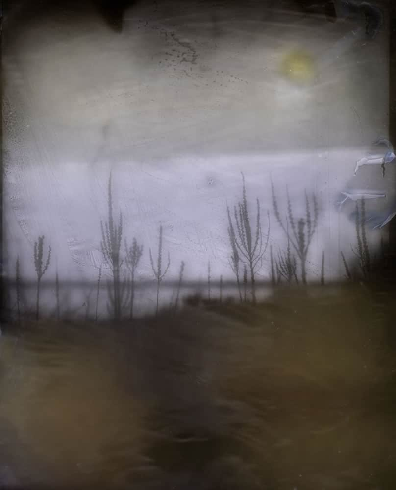 Homemade Dryplate - Cove - Tinted - John Nanian